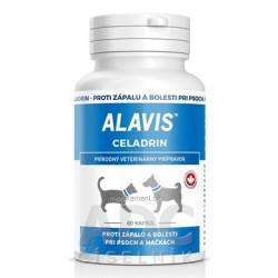 ALAVIS CELADRIN cps pre psy a mačky 1x60 ks