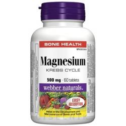 Webber Naturals Magnesium 500 mg tbl 1x60 ks