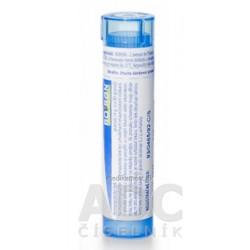 PROSTAKAN FORTE cps 160 mg/120 mg (blis.) 1x60 ks