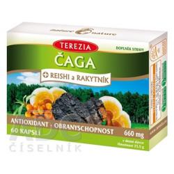 TEREZIA ČAGA + REISHI a RAKYTNÍK cps 1x60 ks