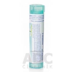 Rectostop ultra masť 1x50 ml