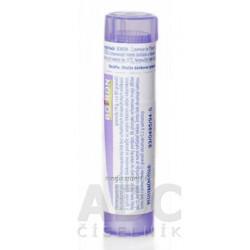 COSMOS (HYDRO-ACTIVE) náplasť na drobné poranenia (65x90mm) 3 ks + nožnice, 1x1 set